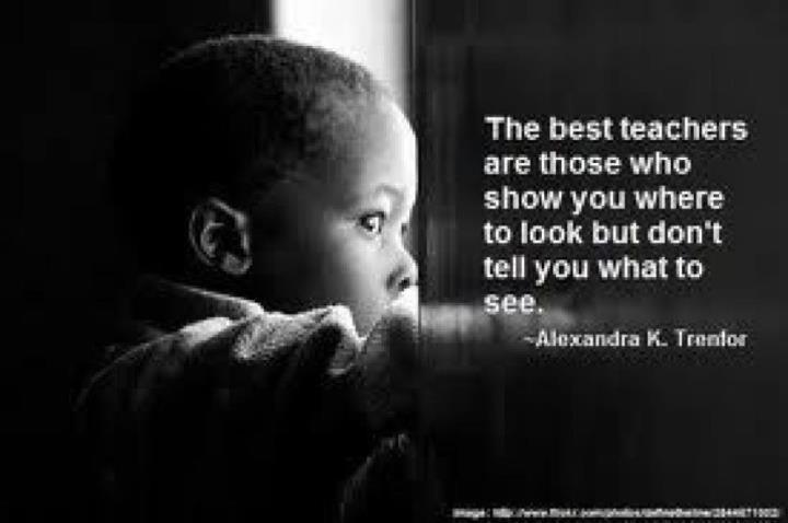 The best teachers are those who show you where to look, but dont tell you what too see.